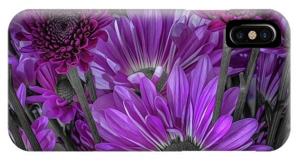 Purple Power Chrysanthemum  IPhone Case