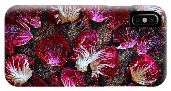 Purple Radicchio IPhone Case
