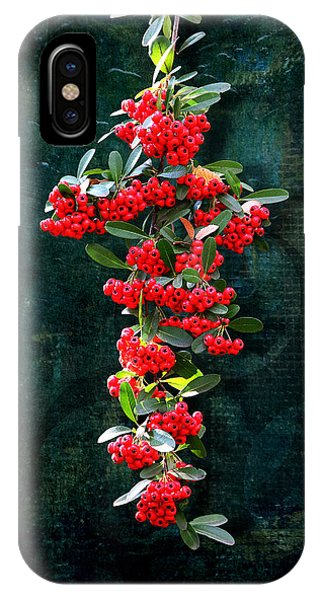 Pyracantha Berries - Do Not Eat IPhone Case