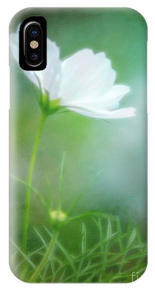 Radiant White Cosmos In The Evening Light IPhone Case