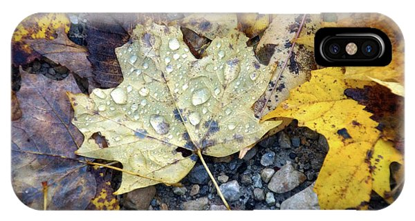 IPhone Case featuring the photograph Rainy Autumn Day by Mike Murdock