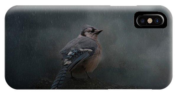 Rainy Day Blues  IPhone Case