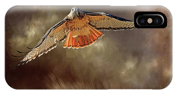 Red Tail Hawk iPhone Case - Raptor by Donna Kennedy