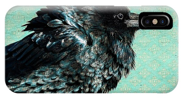Raven Maven IPhone Case