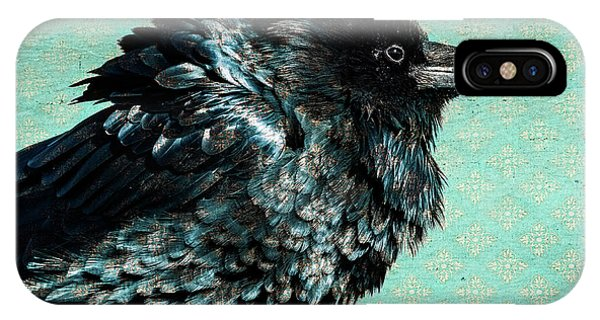 Raven Maven IPhone Case