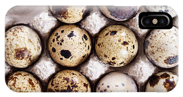 Eggs iPhone Case - Raw Quail Eggs In Egg Holder From Above by Elena Veselova