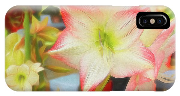 Red And White Amaryllis IPhone Case