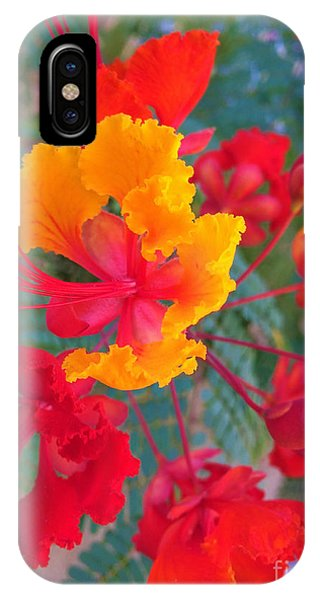 Mtv iPhone Case - Red And Yellow by Mayra MT Valderrama