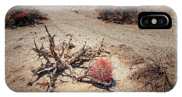 Red Barrel Cactus IPhone Case