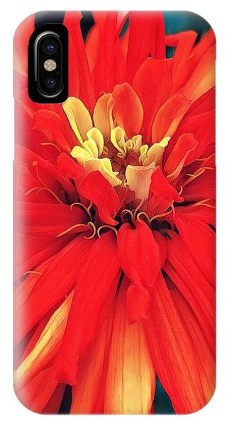 Red Bliss IPhone Case