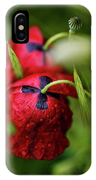 Soft iPhone Case - Red Corn Poppy Flowers With Dew Drops by Nailia Schwarz
