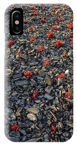 Red Flowers Over Stones IPhone Case