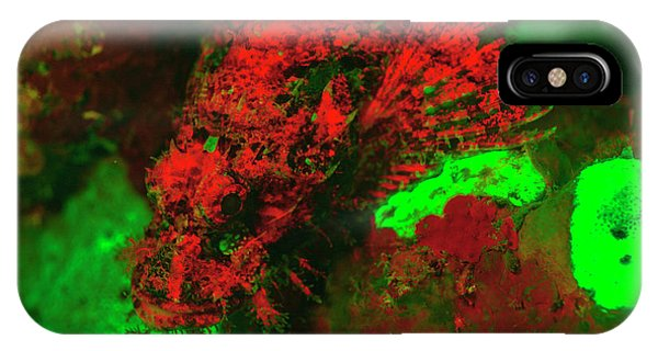 Red Fluorescing Scorpionfish Surrounded Phone Case by Stuart Westmorland