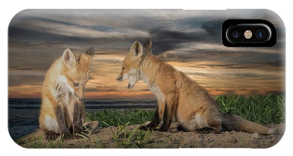 Red Fox Kits - Past Curfew IPhone Case