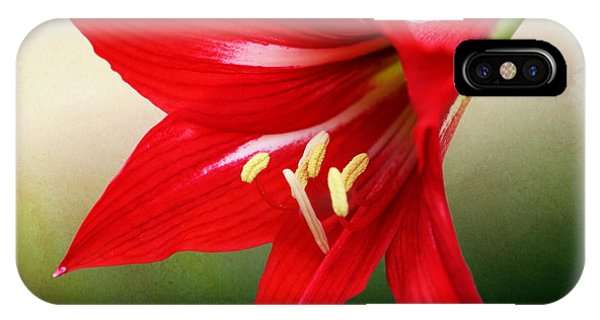 Red Lily Flower IPhone Case
