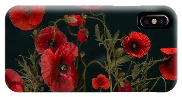 Red Poppies On Black IPhone Case