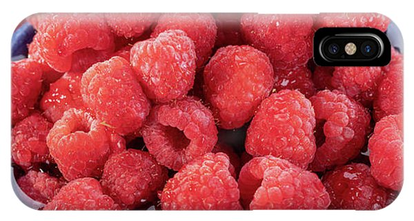 Blue Berry iPhone Case - Red Raspberries In A Bowl by Steve Gadomski