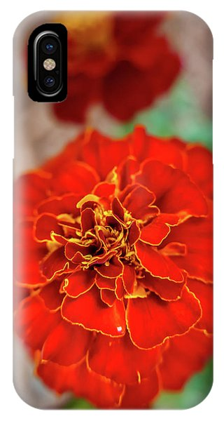 Red Summer Flowers IPhone Case