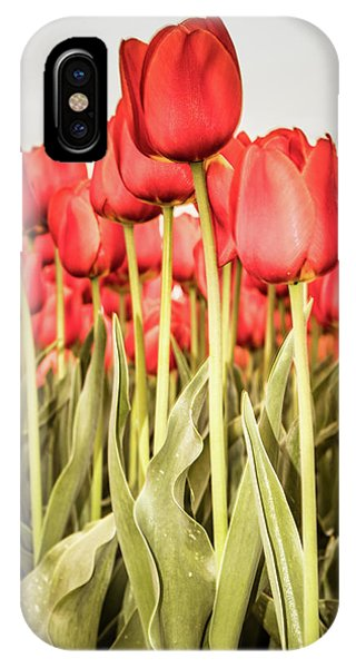IPhone Case featuring the photograph Red Tulip Field In Portrait Format. by Anjo Ten Kate