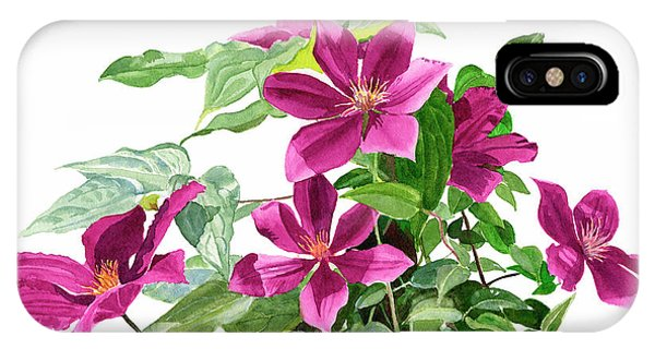Violet iPhone Case - Red Violet Clematis by Sharon Freeman
