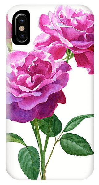 Violet iPhone Case - Red Violet Roses With Bud On White by Sharon Freeman