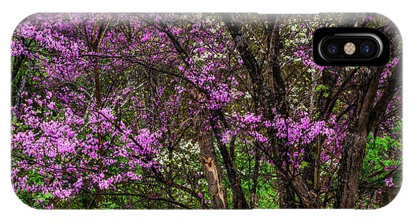 iPhone Case - Redbud And Dogwood In The Rain by Thomas R Fletcher
