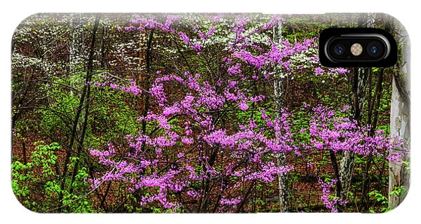 iPhone Case - Redbud Dogwood And Sycamore by Thomas R Fletcher