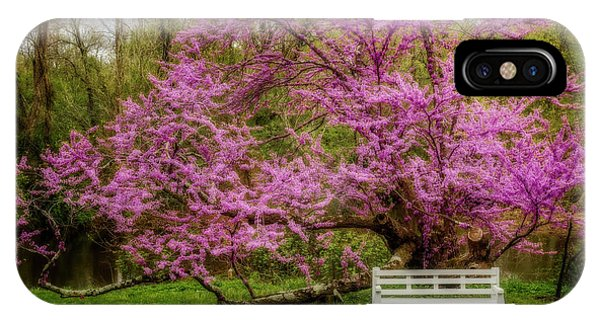 iPhone Case - Redbud Tree During The Spring by Susan Candelario