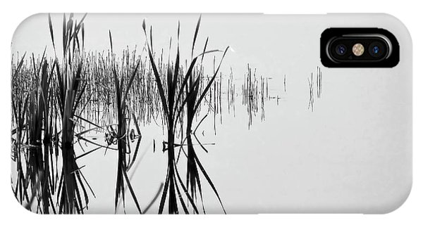Reed Reflection IPhone Case