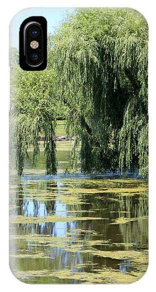 Reflections From Mother Willow IPhone Case