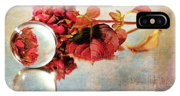 IPhone Case featuring the photograph Reflective Mood by Randi Grace Nilsberg