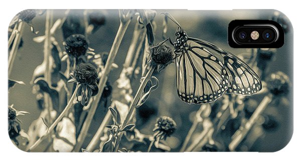 Resting Butterfly Bw IPhone Case