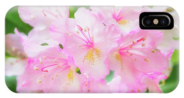 IPhone Case featuring the photograph Rhododendron 4 by Leland D Howard
