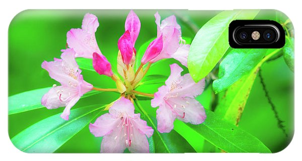 IPhone Case featuring the photograph Rhododendron by Leland D Howard