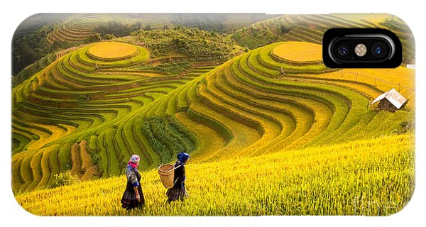 Horticulture iPhone Case - Rice Fields On Terraced Of Mu Cang by Anek.soowannaphoom