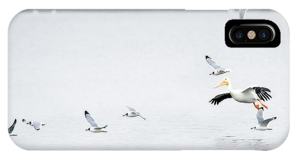 IPhone Case featuring the photograph Franklin Gull Dinner Fight by Edward Peterson