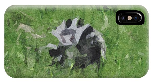 Ring-tailed Lemur iPhone Case - Ring Tailed Lemur Lemur Black White by Draw Sly