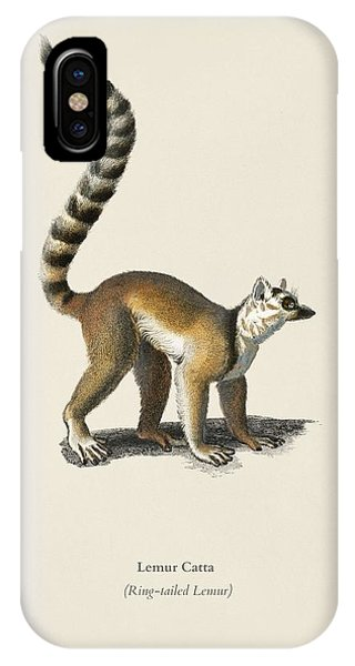 Ring-tailed Lemur iPhone Case - Ring-tailed Lemur  Lemur Catta  Illustrated By Charles Dessalines D' Orbigny  1806-1876  by Celestial Images