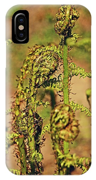 Rivington Terraced Gardens. Fern Frond. IPhone Case