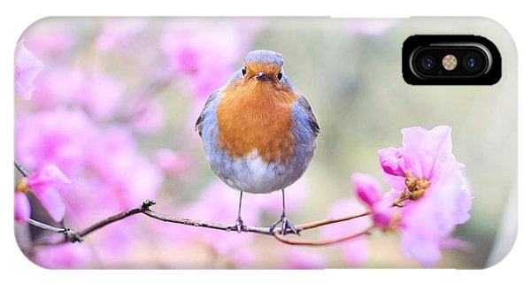 Robin On Pink Flowers IPhone Case
