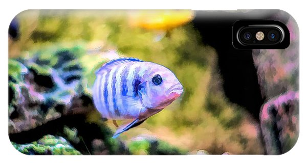 IPhone Case featuring the digital art Rock Cichlid Blue Zebra by Don Northup