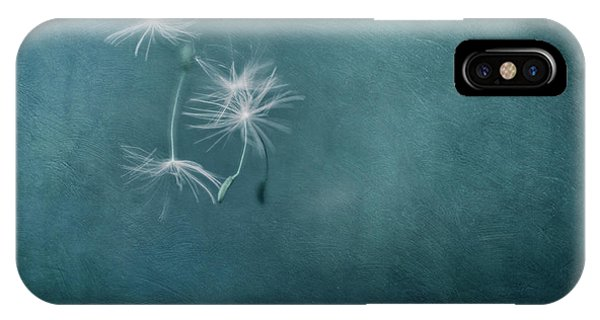Teal iPhone Case - Room To Fly by Priska Wettstein