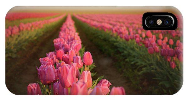 Rows Of Pink Impression IPhone Case