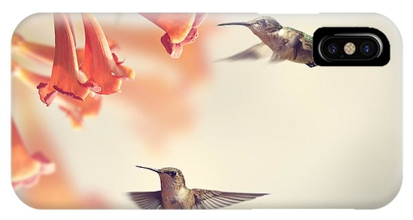 Blossom iPhone Case - Ruby Throated Hummingbirds Hover Over by Svetlana Foote