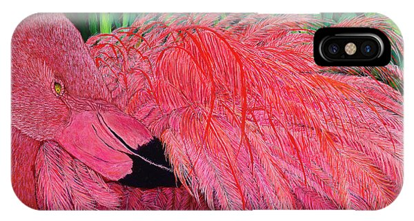 Ruffled Flamingo IPhone Case