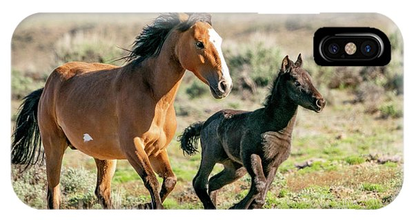Running Wild Mustangs - Mom And Baby IPhone Case
