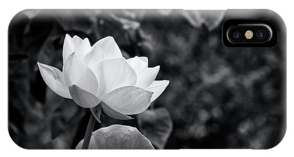 IPhone Case featuring the photograph Sacred Lotus Monochrome by Tim Gainey