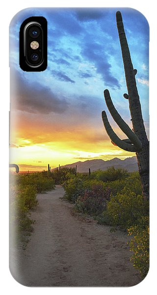 Saguaro Trail IPhone Case