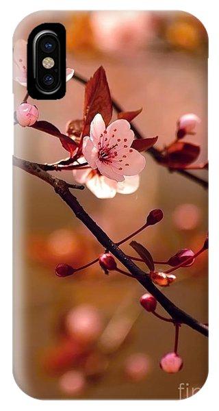 Botanical Garden iPhone Case - Sakura Flowers by Montypeter