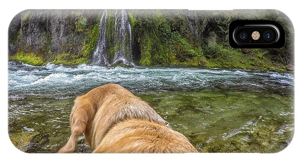 IPhone Case featuring the photograph Salt Creek Falls By Photo Dog Jackson by Matthew Irvin